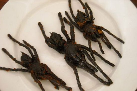 Why Try Spider Food Dishes? - HalloweenEventsUSA.com