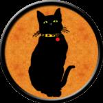 Black Cat orange background, Yellow Collar